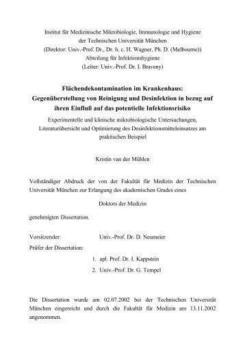 Thesis - Tumb1.biblio.tu-muenchen.de