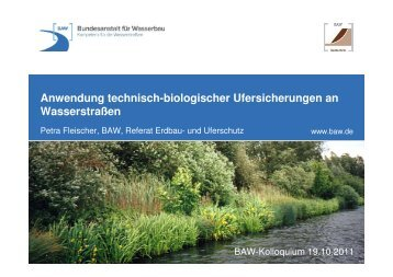 10,3 MB - Alternative technisch-biologische Ufersicherungen