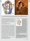 (2008): Augenbrauen-Transplantation. - Universum, 4, NHMW - Seite 3