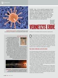 Kroh, A. & Harzhauser, M. (2009): Die Vernetzte Erde.