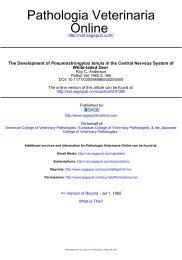 The Development of Pneumostrongylus tenuis in the Central ...