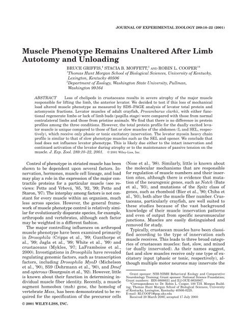 Muscle Phenotype Remains Unaltered After Limb Autotomy and ...