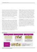 """Studie """"Analytics: Big Data in der Praxis"""" - IBM - Seite 6"""