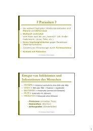 Ektoparasiten Schädlinge.pdf