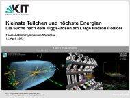 Kleinste Teilchen und höchste Energien - Institut für Experimentelle ...
