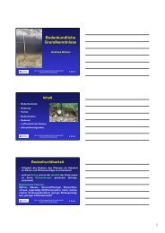 Bodenkundliche Grundkenntnisse