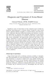 Diagnosis and Treatment of Avian Renal Disease - 2ndChance.info