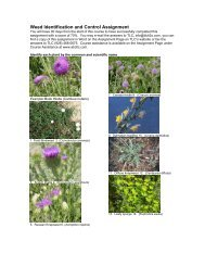 Weed Identification and Control Assignment