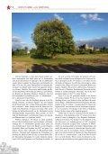 "przewodnik ""Krzyżtopór"" - ABMprojekt - Page 6"