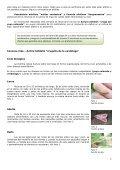 INTA-INFOPLAGAS Nº 9.pdf - Page 2