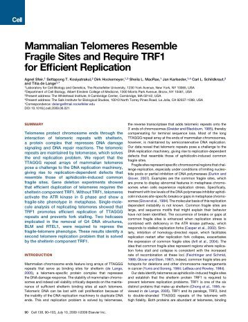 Mammalian Telomeres Resemble Fragile Sites and Require TRF1 ...