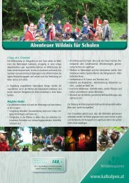 Angebot für Schulgruppen im WildnisCamp - Nationalpark Kalkalpen