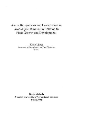 Auxin Biosynthesis and Homeostasis in Arabidopsis thaliana in ...