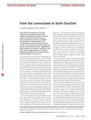 from the connectome to brain function - The Rockefeller University