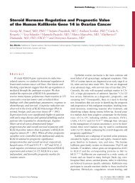Steroid Hormone Regulation and Prognostic Value of the Human ...
