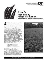 Alfalfa - High-quality Forage Production - UT Extension - The ...