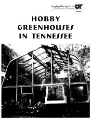 Hobby Greenhouses in Tennessee - UT Extension - The University ...