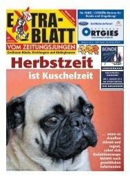 Bünde 10-13 - Extrablatt vom Zeitungsjungen