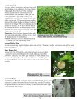 13Jun07 - University of Maryland Extension - Page 5