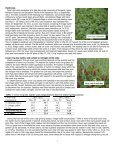 Using Reduced Tillage and Cover Crop Residue to Manage Weeds ... - Page 2