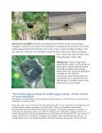 HortTips NewsletterVol. 1, No. 1 - University of Maryland Extension - Page 2