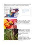 HortTips NewsletterVol. 1, No. 1 - University of Maryland Extension - Page 3