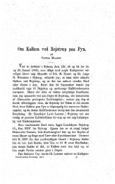Om kalken ved Rejstrup på Fyn s. 33 - Dansk Geologisk Forening