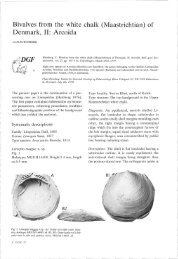 Bulletin of the Geological Society of Denmark, Vol. 27/03-04, pp. 105 ...