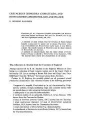 Comatulida and Roveacrinida - Dansk Geologisk Forening