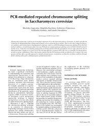 PCR-mediated repeated chromosome splitting in ... - OpenWetWare
