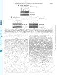 Boutahar et al., 2004 - OpenWetWare - Page 6