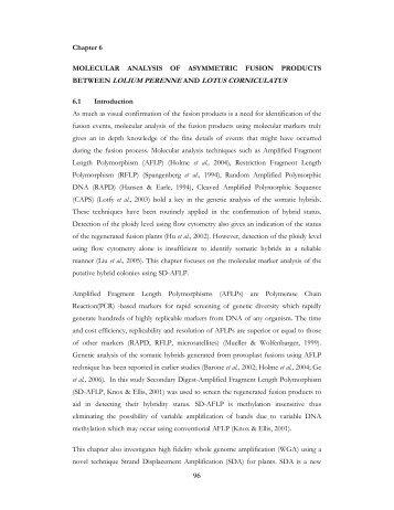 Protoplast fusion of Lolium perenne and Lotus corniculatus for gene ...