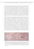 Der Nusplinger Plattenkalk (Weisser Jura ζ) – Grabungs- kampagne ... - Page 3