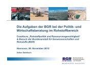 BGR-Abteilungsleiter Energierohstoffe, Mineralische Rohstoffe