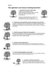 bijlage 4 tien geboden voor bouw of aanleg bij bomen [Klik hier om ...