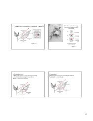 Leaf has 3 axes:1) proximodistal, 2) centrolateral, 3) ab-adaxial ...