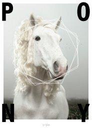 # 52• April 2010 - Pony