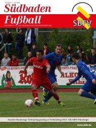 Ausgabe 3   Juni 2013 - SBFV