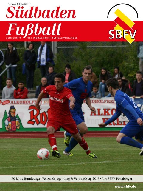 Ausgabe 3 | Juni 2013 - SBFV