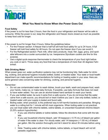 1 What You Need to Know When the Power ... - State of Michigan
