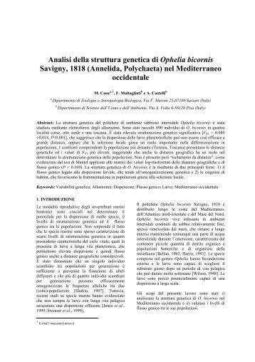 Analisi della struttura genetica di Ophelia bicornis Savigny, 1818 ...