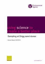 Sampling at Drigg sand dunes - NERC Open Research Archive