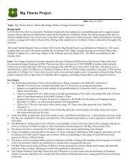 Big Thorne Briefing Paper - USDA Forest Service