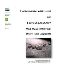 environmental assessment for cave and abandoned - USDA Forest ...