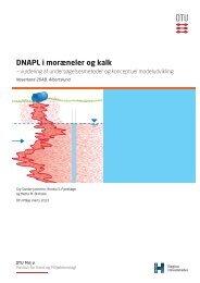 DNAPL i moræneler og kalk - DTU Orbit - Danmarks Tekniske ...