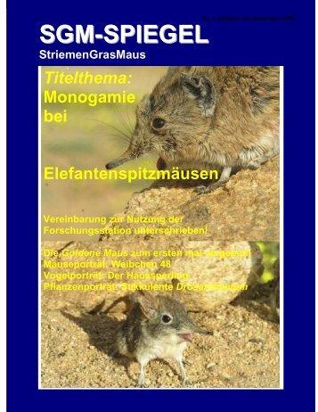 SGM-SPIEGEL - Striped Mouse