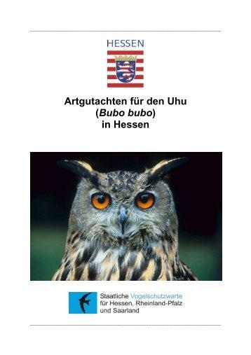 Artgutachten für den Uhu (Bubo bubo) in Hessen - Staatliche ...
