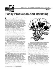 Pansy Production And Marketing - Alabama Cooperative Extension ...