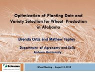Optimization of Planting Date and Variety Selection for Wheat ...