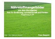 Nährstoffmangelbilder - Amt für Ernährung, Landwirtschaft und ...